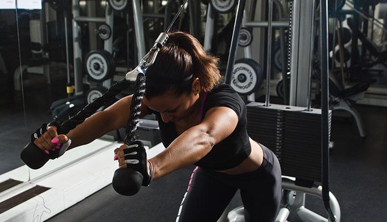 protein bygger muskler