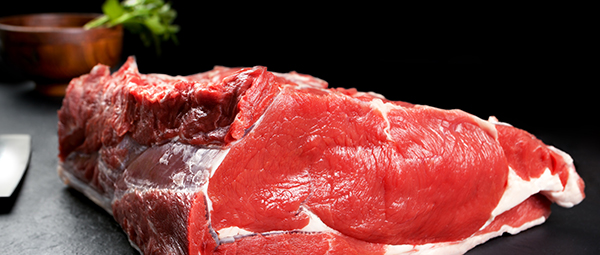 kött proteinpulver