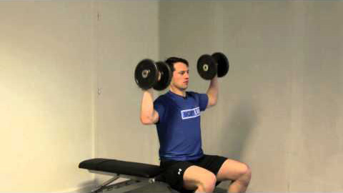Seated Dumbbell Skulder Press